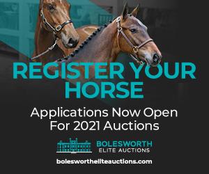Bolesworth Elite Acutions (Powys Horse)