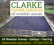 Clarke Equine Services  2018 (Powys Horse)