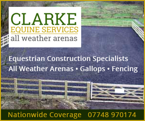 Clarke Equine Services 2019 (Powys Horse)