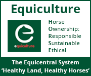 Equiculture 01 (Powys Horse)