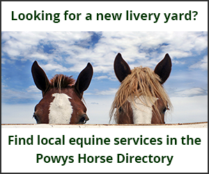 Livery Yards (Powys Horse)
