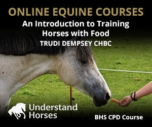 UH - An Introduction To Training Horses With Food (Powys Horse)