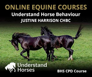 UH - Understand Horse Behaviour (Powys Horse)